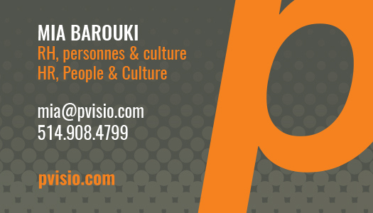 Pvisio Business Cards-1